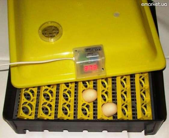 инкубатор клуша инструкция - фото 11